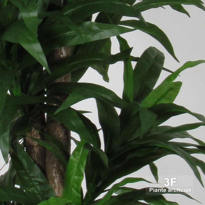 Dracena big trunks altezza cm 150 vaso 22 3f for Piante artificiali