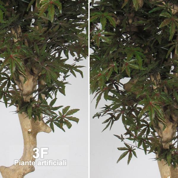 Acero mediterraneo altezza cm 200 vaso cm 28 3f for Piante artificiali