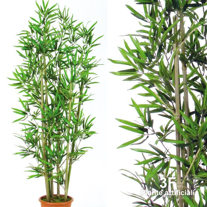 Vendita Piante Bambu Milano.Bamboo Large U V Resistance 6 8 Canne Altezza Cm 150 O Vaso