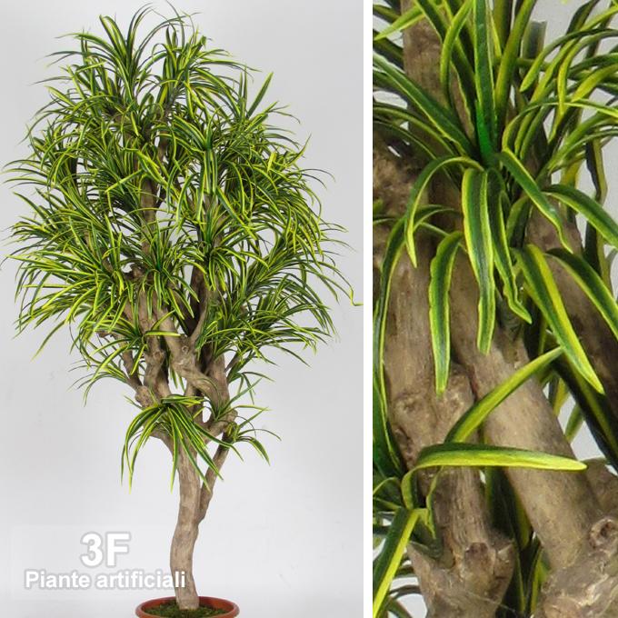 Dracena yucca mini mediterraneo altezza cm 175 vaso for Piante artificiali