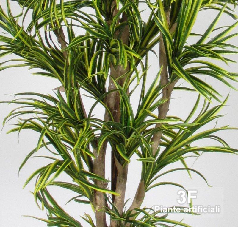 Dracena yucca mini medium altezza cm 150 vaso 22 for Piante artificiali