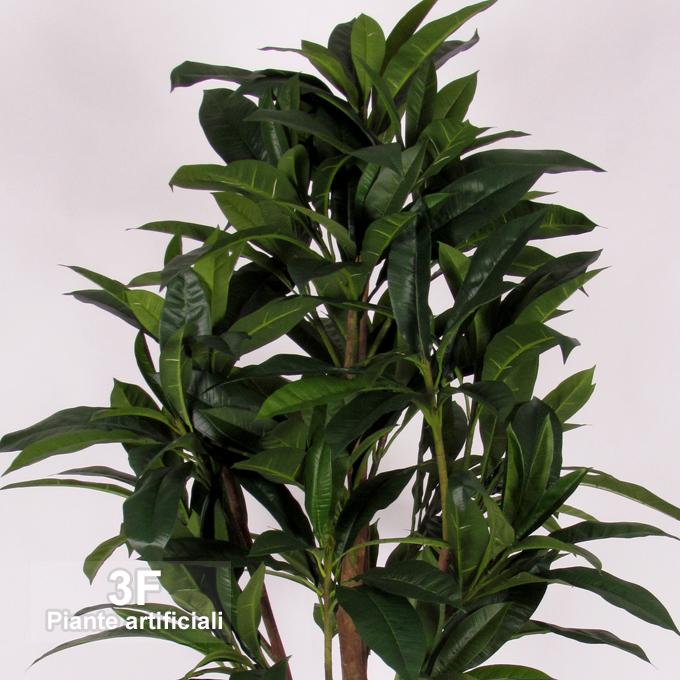 Plumeria tree frangipani altezza cm 185 3f piante for Piante artificiali