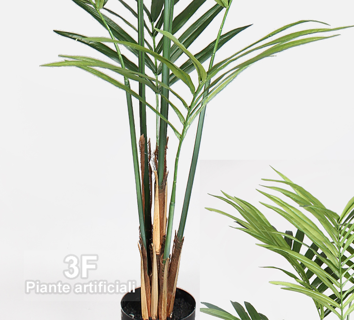 Kentia fosteriana altezza cm 180 vaso cm 20 3f for Piante artificiali