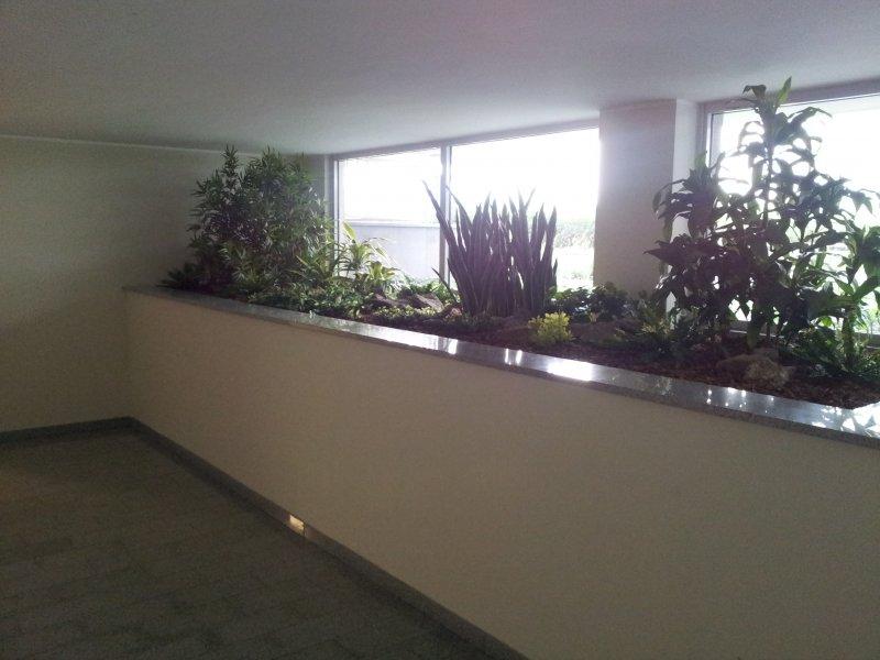 Piante artificiali personalizzate, piante finte, vendita online, personalizza...