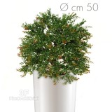 Boxwood French Ball Ø 70-piante artificiali Bosso