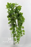 Pothos-PIANTE ARTIFICIALI - POTHOS CADENTE