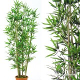 BAMBOO LARGE - U.V. RESISTANCE - 6/8 CANNE-bamboo artificiale