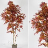 ACERO MAPLE NEW GARDEN RED-PIANTE ARTIFICIALI ACERO
