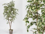 FICUS HAWAIIAN NEW GARDEN VARIEGATED-PIANTE ARTIFICIALI FICUS
